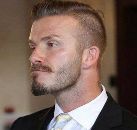 Facial Hair Styles Brilliant 242 Best Beard Styles Images On Pinterest