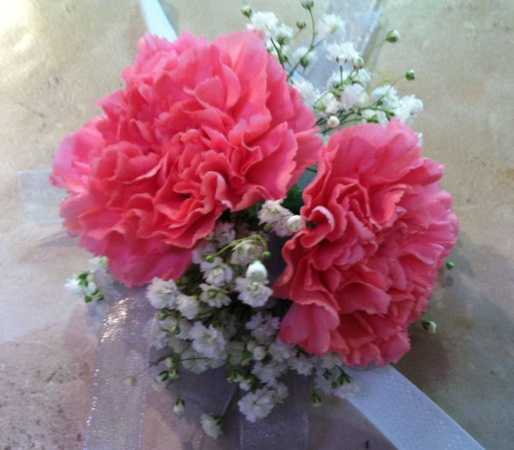Wrist Corsage Of Hot Pink Carnations With Babys Breath
