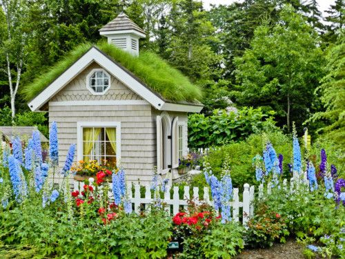 Child's Garden the Coastal Maine Botanical Garden.  With lupines.   Repinned by www.mygrowingtraditions.com