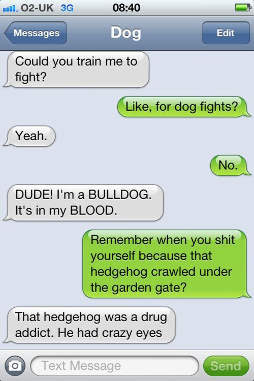 Text from dog... some European out there is ridiculously funny.