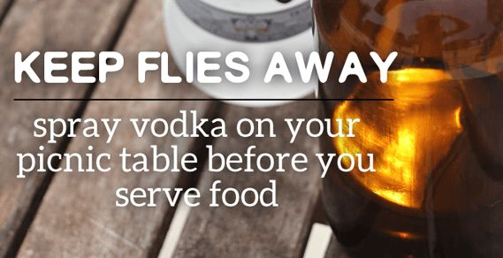 Keep flies away from food this summer with these easy tips & tricks, because nothing ruins a cookout like flies competing for your hotdogs!