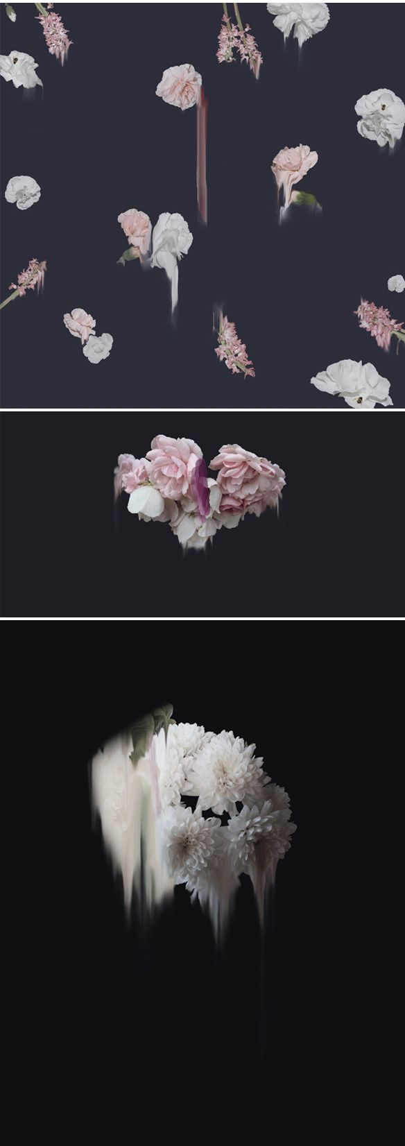 Simone Truong ~ explores flora and fauna… and states of transition that occur in natural phenomena. Her creative process includes traditional painting and photo manipulation. *printmaking* via The Jealous Curator | simone-truong.com