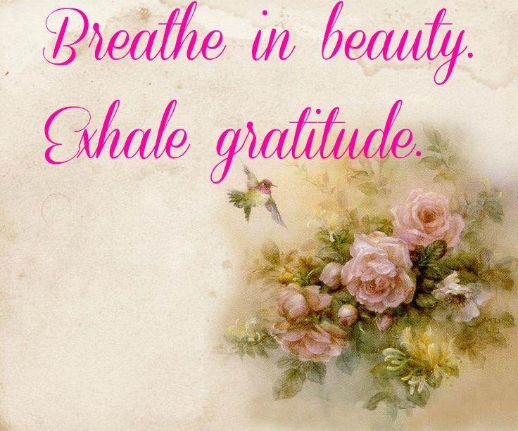 82 best coupons savings money tips images on pinterest money breathe in beautyexhale gratitude fandeluxe Images