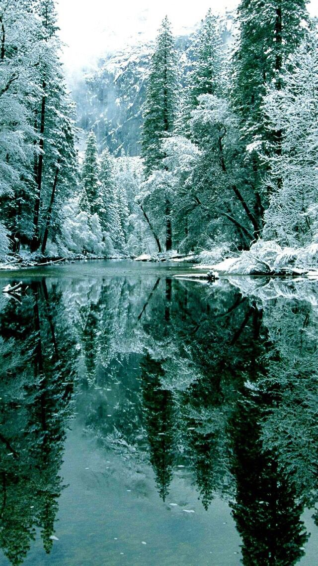 #Nature #Reflection