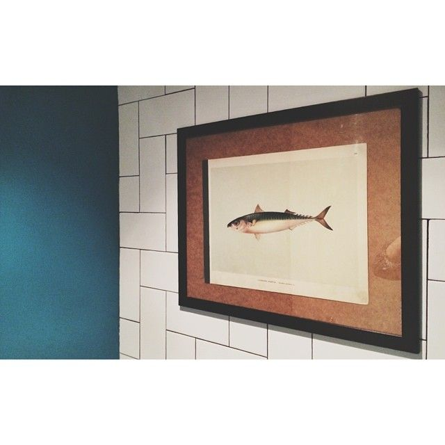 Fish in café