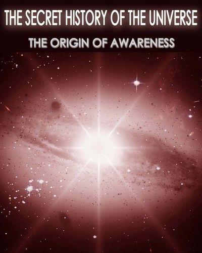 http://eqafe.com/p/the-secret-history-of-the-universe-the-origin-of-awareness-part-3