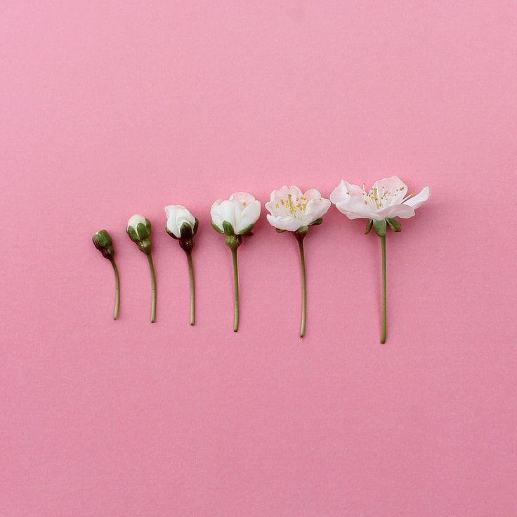 35 wonderful white aesthetic - photo #6