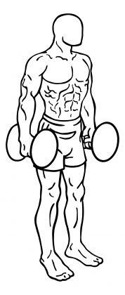 Dumbbell Squat1
