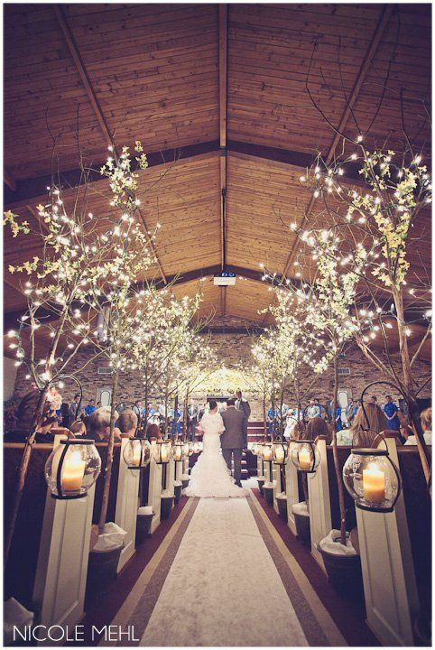 Aisle Trees Blue Yellow Wedding Walkerporterfieldwedding
