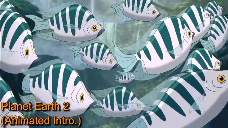 BBC Earth 2 (Animated Movies Intro)