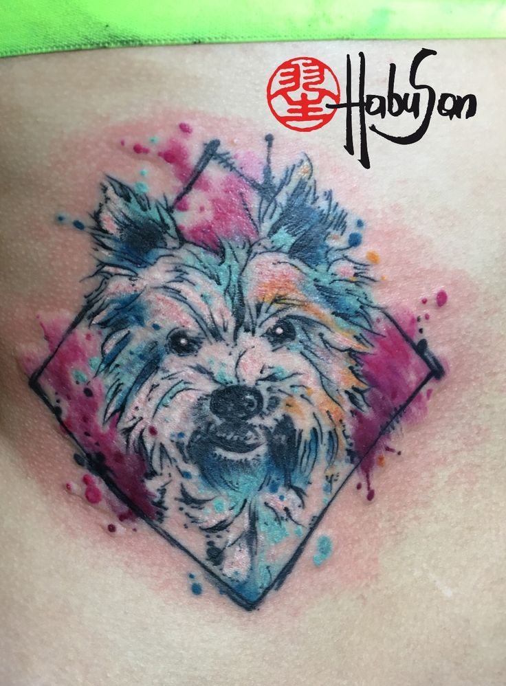 Der Struppi in Watercolour! Danke, Julia! #watercolour #tattoo #wien #habusan