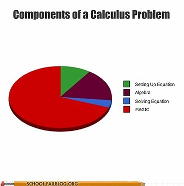 components of a calculus problem