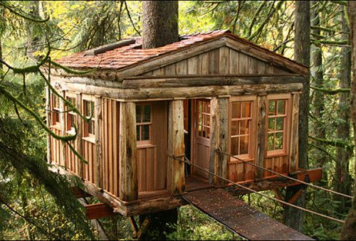 Temple of the Blue Moon Treehouse, Seattle, Washington