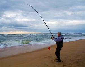 There are numerous anglers who do not fish from boats, yet many of them enjoy surf fishing. Here are a few tips on how to get started out on the right foot.