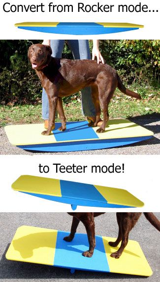 28 Best Images About Agility Equipment On Pinterest