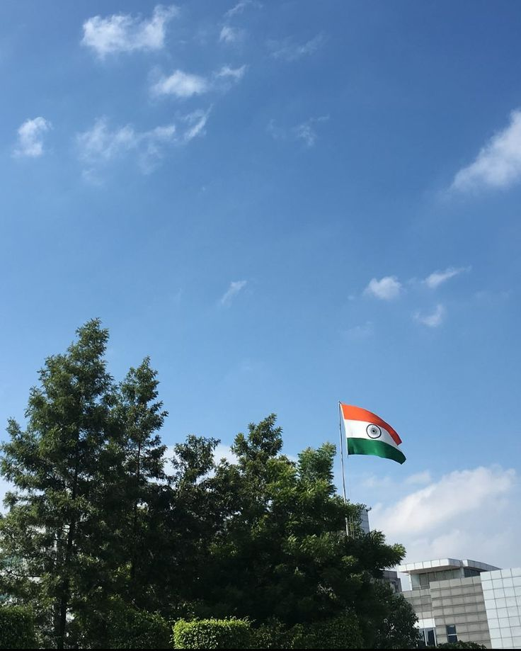 National Flag of India  Saffron: Courage and selflessness; White: Honesty; Green; Faith fertility and prosperity; Ashoka Chakra(while with 24 spokes): Unity; ' ' ' #NationalFlag #India #Tiranga #Tricolor #flag #trinity #July #saffron #white and #green #ashokachakra #nation #faith #prosperity #India #Hindustan #Bharat #AugustSoon #triband #Jorvee #photography #picoftheday #pictureoftheday #pic #honor #