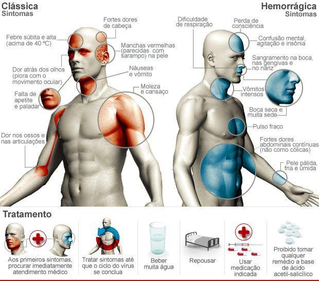 InfoMED Londrina - Dengue Clássica e Hemorrágica - Diferenças