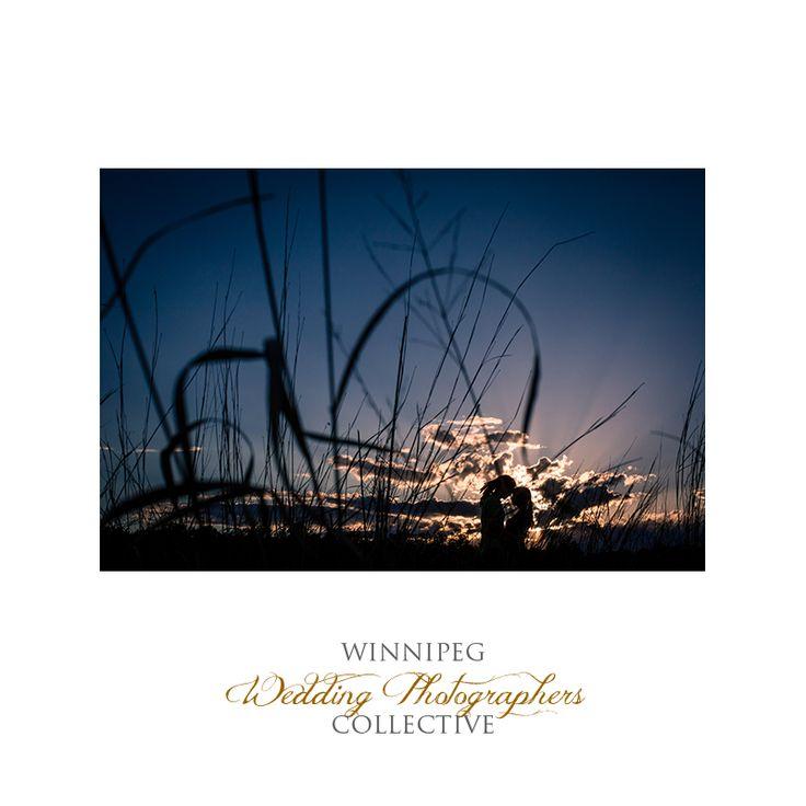 #Engaged #EngagementSession #EngagementPhotos #Winnipeg #WinnipegWeddingPhotographersCollective #TheCollective #Tony #Winnipeg #Manitoba #Kiss #Park #Love #sunset #AssiniboineForest