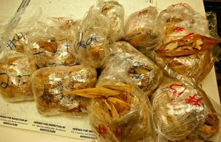 450 illegal tamales from Mexico seized at LAX and destroyed : nottheonion