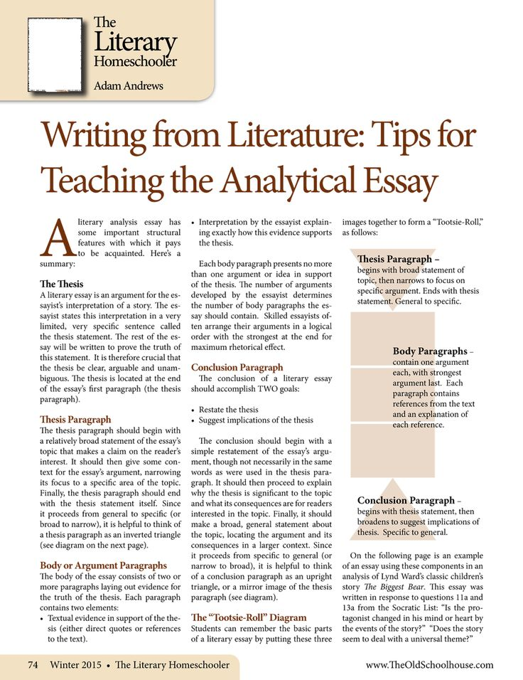 literary essay structure C introductions should identify the work of literature being discussed, name the author, and briefly present the issue that the body of your essay will more fully develop (your thesis) basically, introductions suggest that something interesting is occurring in a particular work of literature 3.