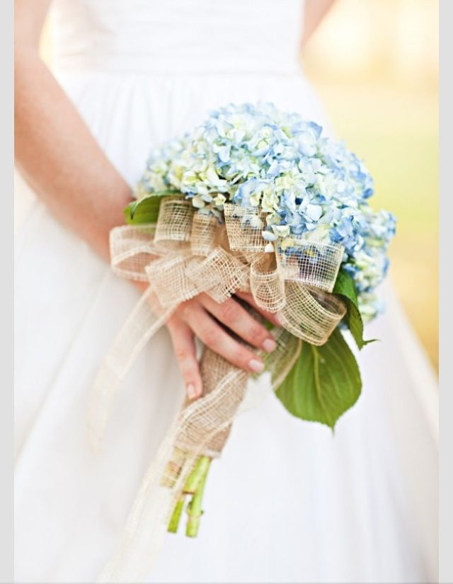 Hydrangea is available year-round in a variety of different colors including blue, white, green, pink and antique colors. Hydrangea are easy to work with, easy to arrange and for that reason make wonderful wedding flowers!: Idea, Hydrangeas Bouquets, Blue Hydrangeas, Bridesmaid Flowers, Burlap Ribbons, Country Wedding, Hydrangeas Wedding Bouquets, Blue Bouquets, Bridesmaid Bouquets