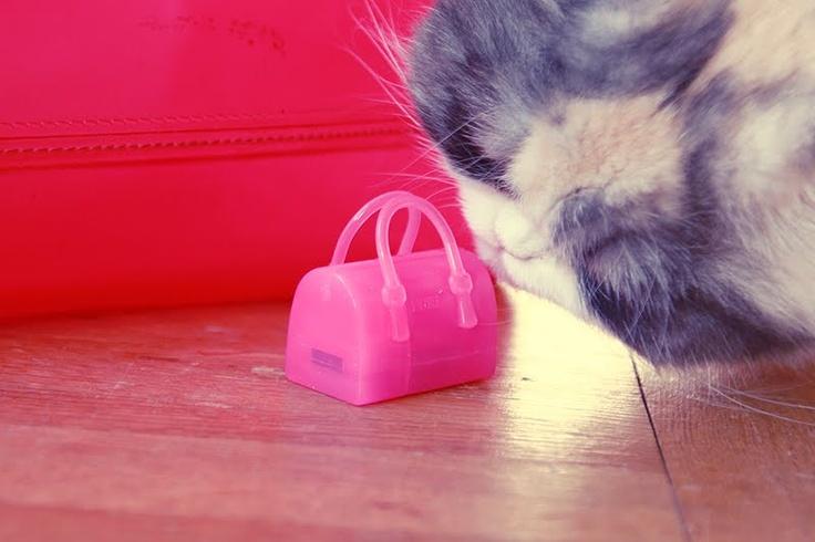 Furla candy bag USB Stick aaa! i want!!