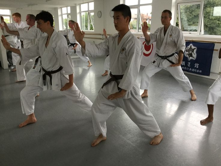what is goju ryu karate - it is one of the original traditional Okinawan styles of karate that has strong links to Chinese martial arts practice
