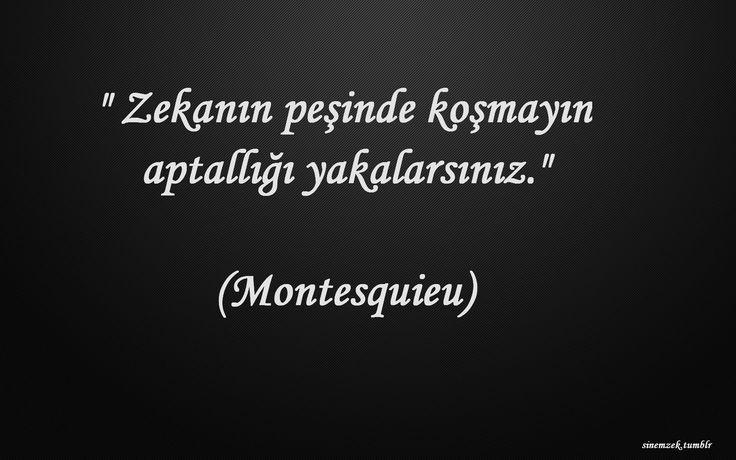 * Montesquieu