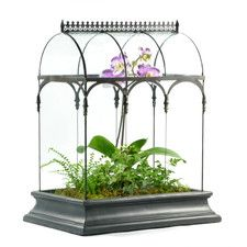 Barrel Vault Rectangular Terrarium