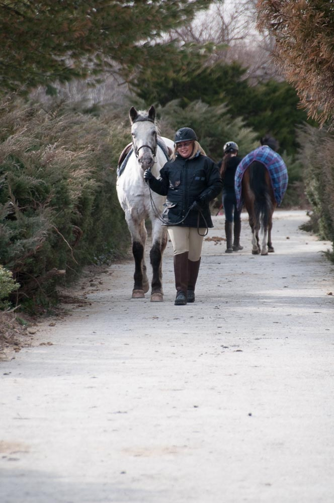 Then I had to take ChaCha back! | My Love of Horses | Pinterest | I ... Quotes About Friendships Fading