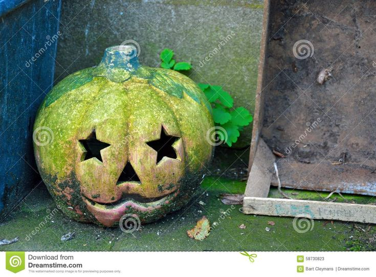 Download Old Faded Halloween Pumpkin Royalty Free Stock Photo via CartoonDealer. Old Faded Halloween Pumpkin Old Wooden Crate. Zoom into our collection of high-resolution cartoons, stock photos and vector illustrations. Image:58730823