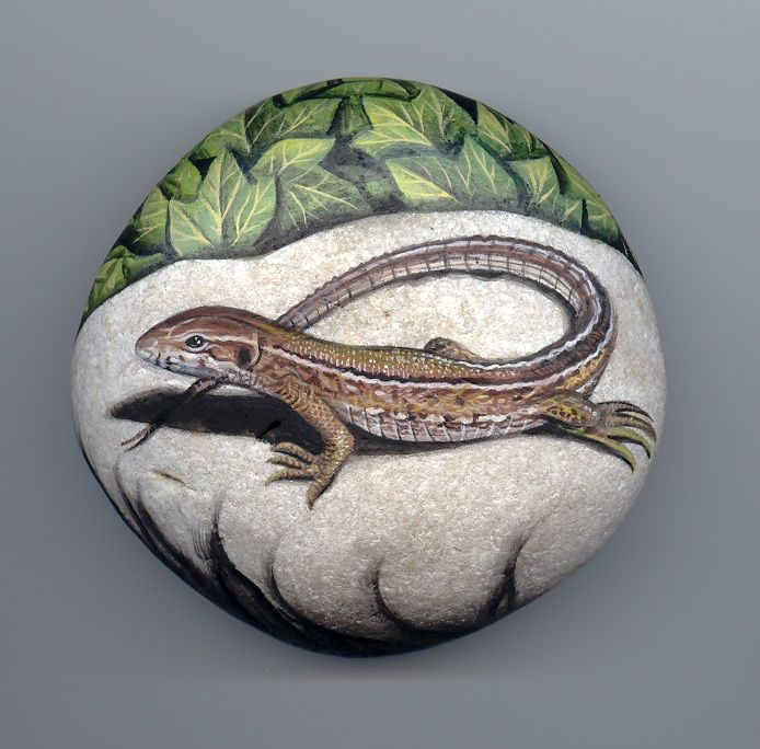 Lizard, paint on stone by Roberto Rizzo--I would like to try doing a lizard on a rock for my daughter; it'll never be as lovely as this one, but I can learn a lot from studying this piece! Just beautiful!