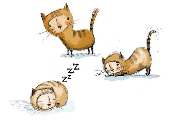 Kitty doodles - By artist Lisa Hunt★❤★