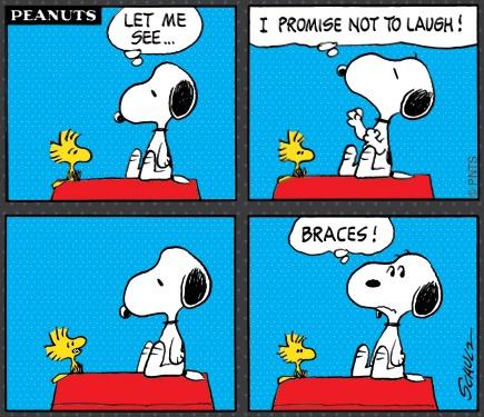 I never knew orthodontists treated birds...