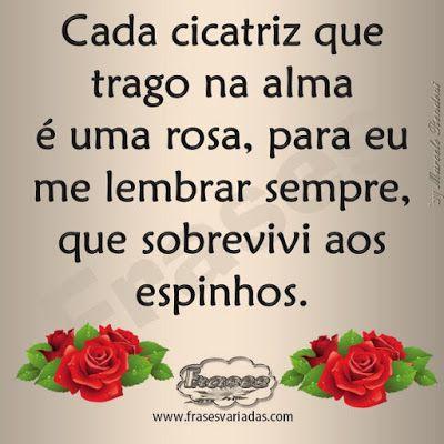 Cada cicatriz que trago na alma é uma rosa, para eu me lembrar sempre, que sobrevivi aos espinhos. - FRASES E MENSAGENS - Google+