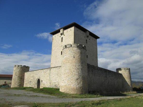 #Mendoza. Iñigo López de Mendoza lo mandó construir a principios del siglo XIII. #Álava @PatrimonioAlava