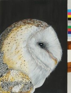 This is a barn owl painted by me on canvas acrilic jan 2013 #paola consani - available for 200€