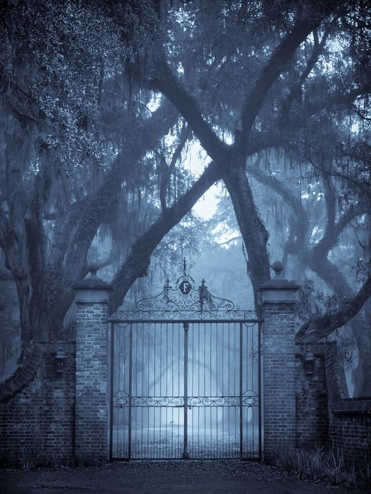 Fenwick Hall, Johns Island, SC© Doug Hickok  All Rights ReservedMore here… hue and eye