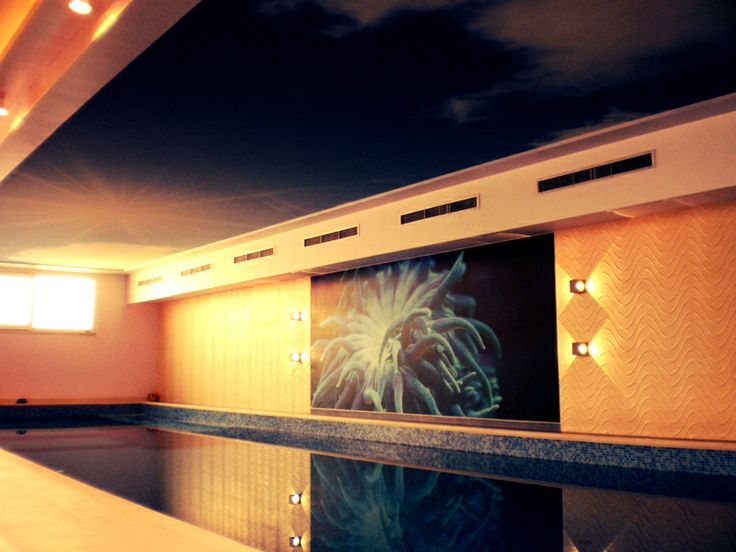 Beatiful graphic nex to the indoor swimming pool. Project by: http://www.niveto.hr/