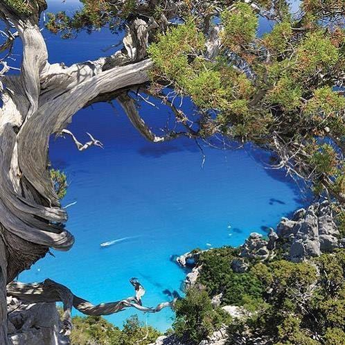 Escapade farniente en Sardaigne dès 399 vols inclus => http://www.voyage-prive.com/fiche-produit/details/53778/b1 #voyageprivefrance #trip #tourisme #upgrade #travel #voyage #voyageprive #holiday #discover #seetheworld #instagram #instatravel #instavoyage #traveling #vacation #lovetravel #beautiful #beach #sea #sun #evasion #detente #break #nature Hotels-live.com via https://www.instagram.com/p/BFlaHONBMvA/ #Flickr