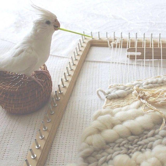 → Telar Diagonal en proceso #apedido #josefina  #weaving #telar #hechoenchile #hechoamano #handmade #design #wallart #wallhangig #woven #decor