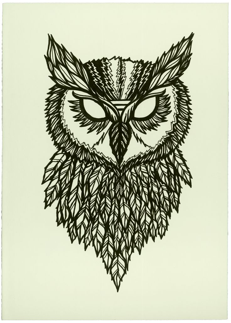 Owl Line Drawing Tattoo : Owls drawings the essence of life and line