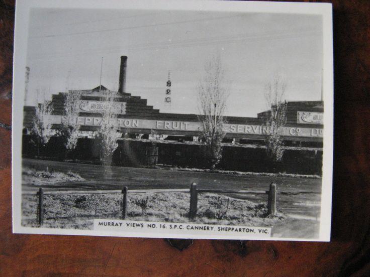 SPC Canery Shepparton Victoria Australia | eBay