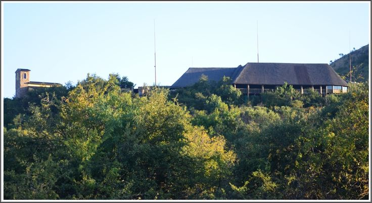 Nature @Thaba Tshwene Game Lodge