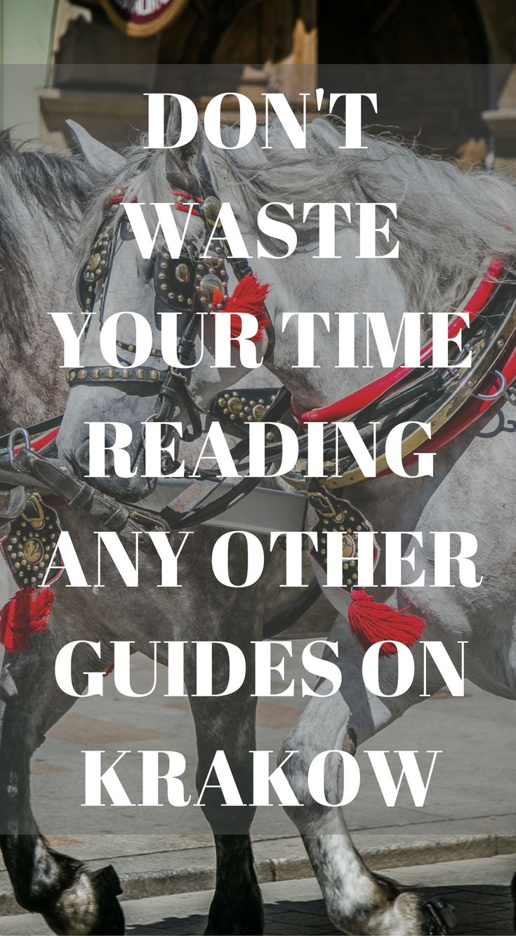Don't waste your time reading any other travel guides on Krakow Poland. This is the only travel guide you will need to read to plan your epic visit you Krakow Poland. Click to read 3 Day Krakow Itinerary – Things to Do in Krakow  https://www.divergenttravelers.com/things-to-do-in-krakow-poland/ #Poland #Travel #Guide #Krakow