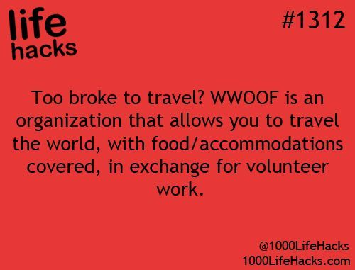 WWOOF: Volunteer work on organic and/or self sustaining farms in trade for meals, room and board.