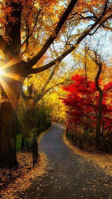 | October | Kaleidoscope Path