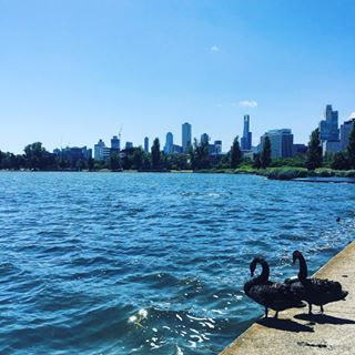 Albert Park Lake, Albert Park | 19 Places To Really Chill The Fuck Out In Melbourne