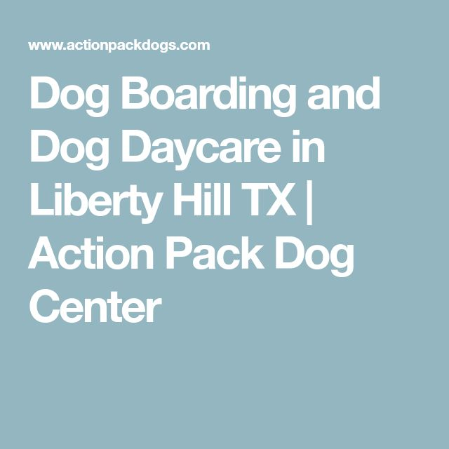 Dog Boarding And Dog Daycare In Liberty Hill TX