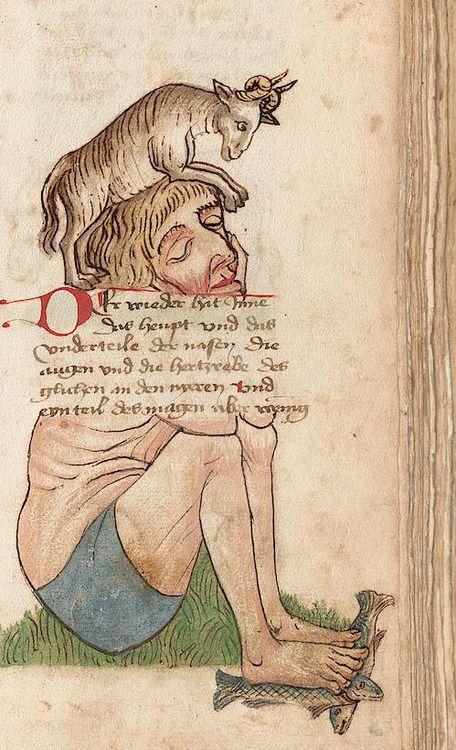 Eberhard Karls Universität Tübingen, Md 2, detail of f.39r. Tübinger Hausbuch: Iatromathematisches Kalenderbuch; die Kunst der Astronomie und Geomantie. Württemberg, 15th century.